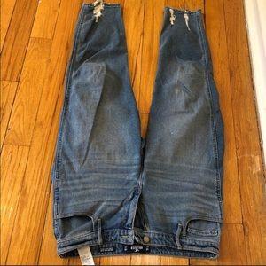 🌼Jean Sale🌼Hollister Jean in size 15 R waist 32